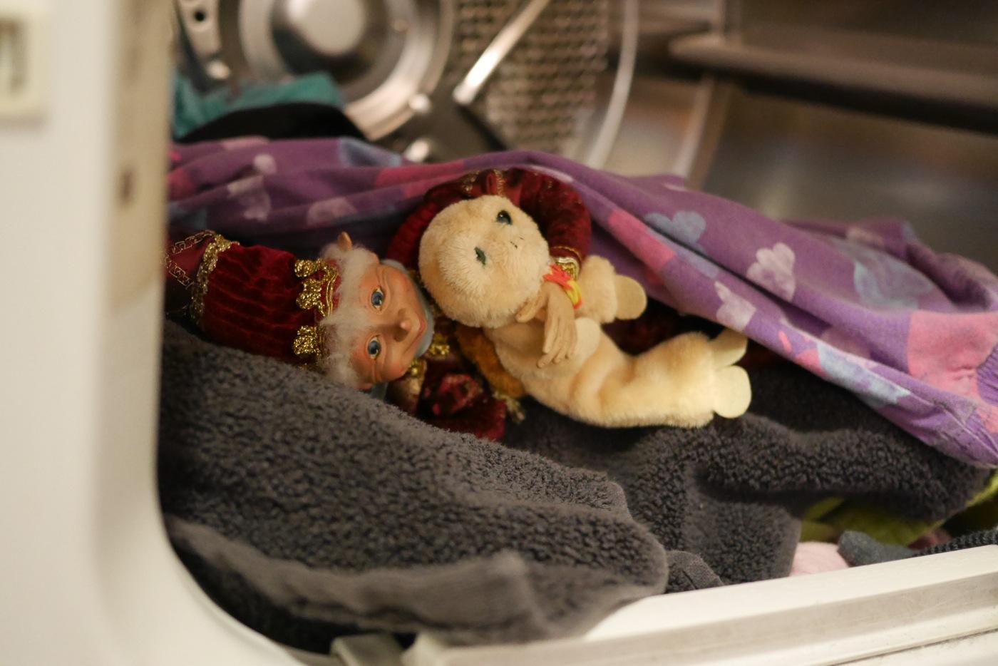 Gourmandé était bien installé pour dormir dans la sécheuse, avec une peluche à sa mesure pour lui tenir compagnie.