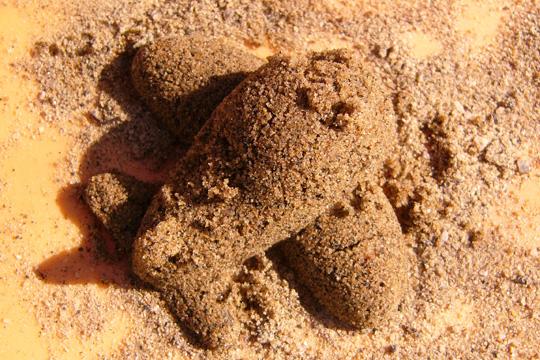 Gâteau de sable et bonnes manières