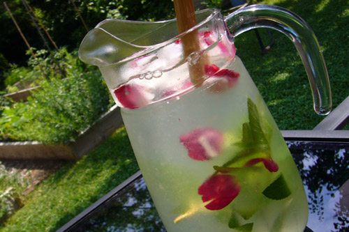 http://www.banlieusardises.com/wp/media/img/Limonade-a-leau-de-rose.jpg