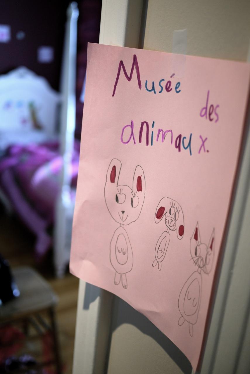 Musée des animaux - une exposition préparée par Fanny, 7 ans.