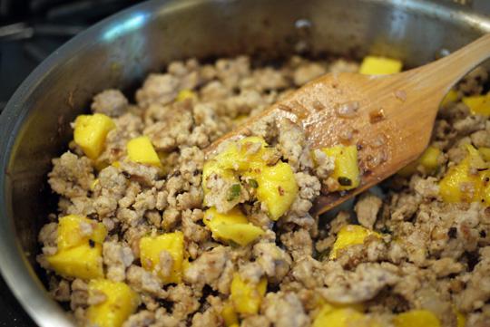 Tostadas au poulet et à la mangue