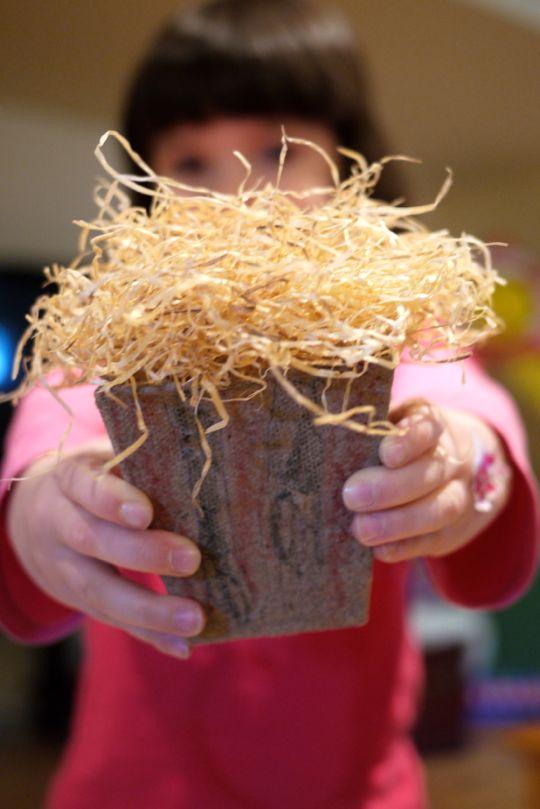 Réussir ses semis avec les enfants (ou sans eux)