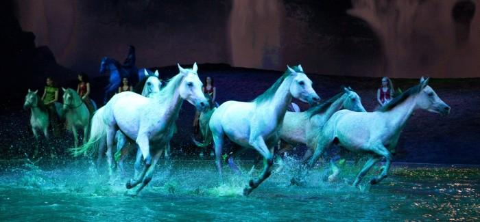 Spectacle Cavalia Odysséo et visite des écuries en famille: grandiose!